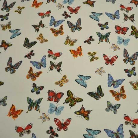 vol-de-papillons-nathalie-lete